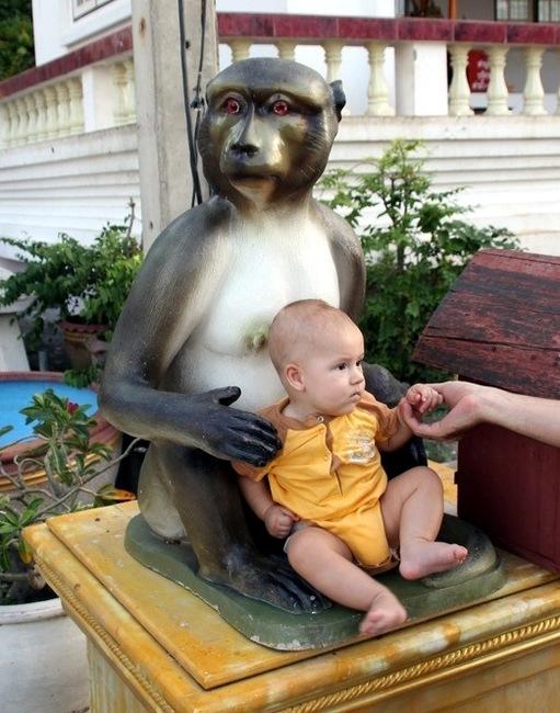 Саша на обезьяньем троне