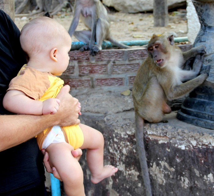 Мальчик смотрит на обезьяну