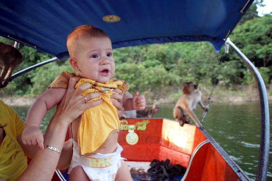 Саша смотрит на обезьян