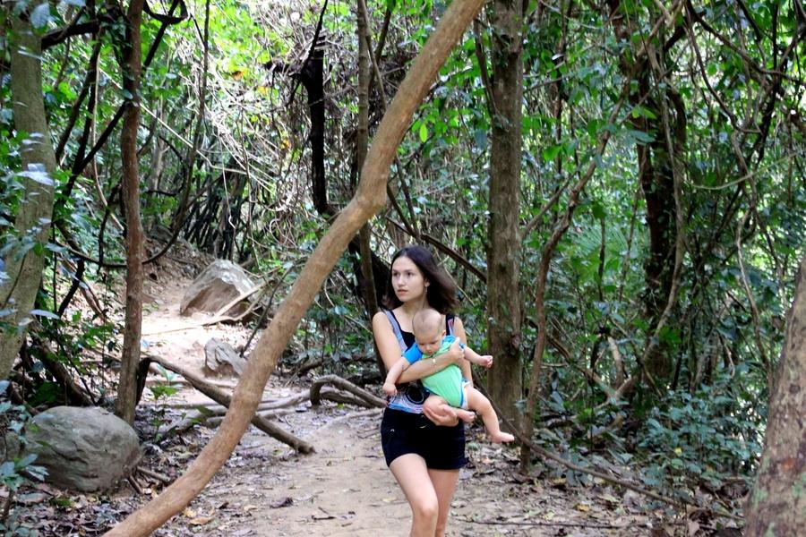 Pa La-U Waterfall Jungle