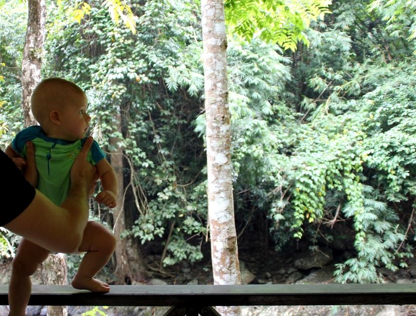 Саша смотрит на джунгли