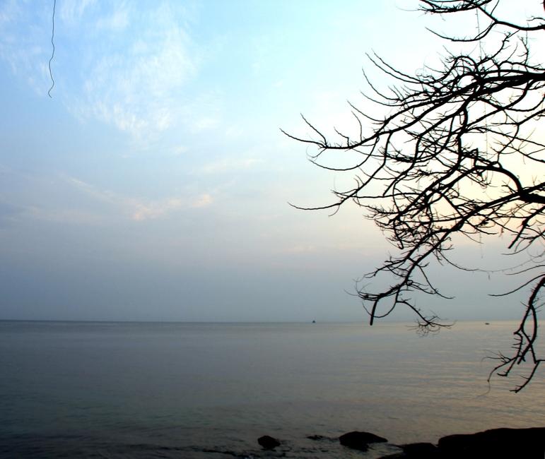 небо, море, дерево