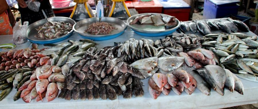 Морепродукты на тайском рынке
