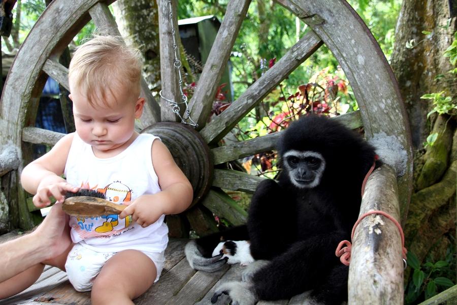 Мальчик и обезьяна