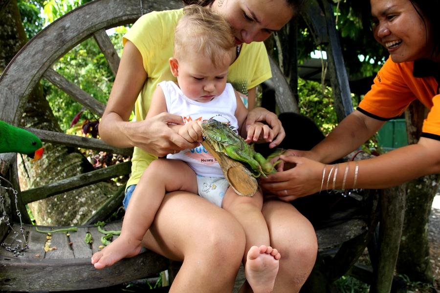 Маленький мальчик играет с зеленой ящерицей
