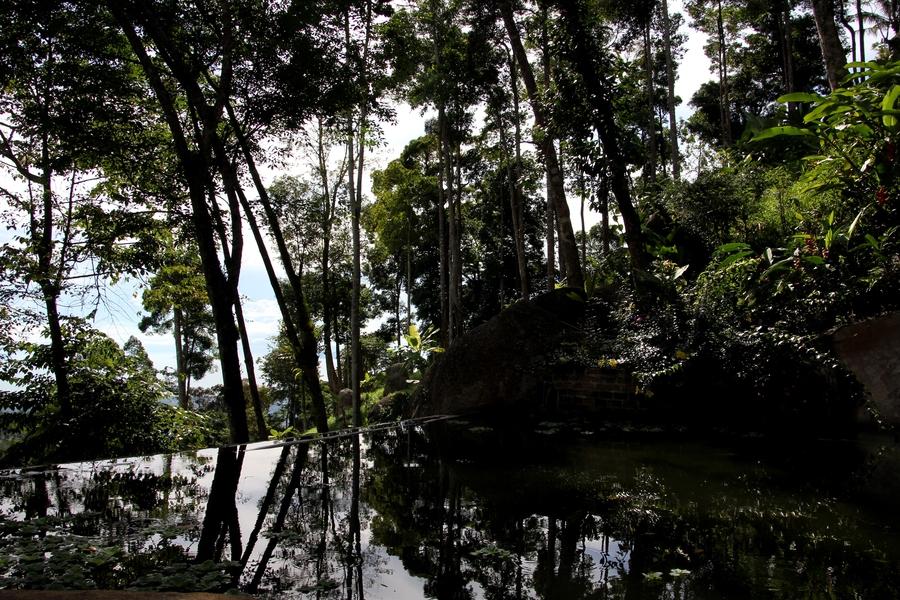 Лагуна в Парадис Парке в Таиланде