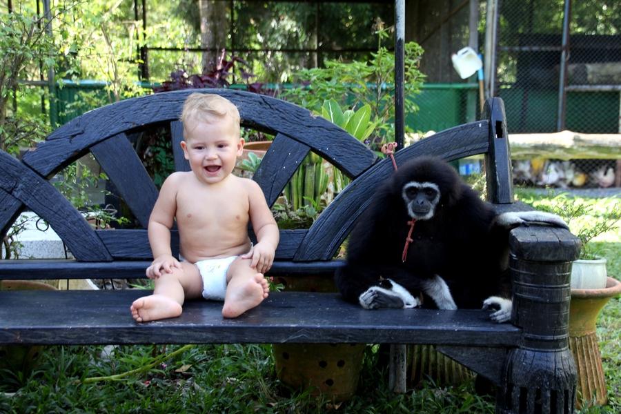 Ребенок и обезьяна сидят на скамейке
