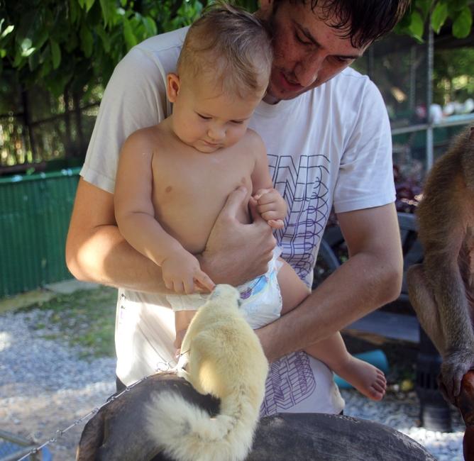 Маленький ребенок в Paradise Park Farm