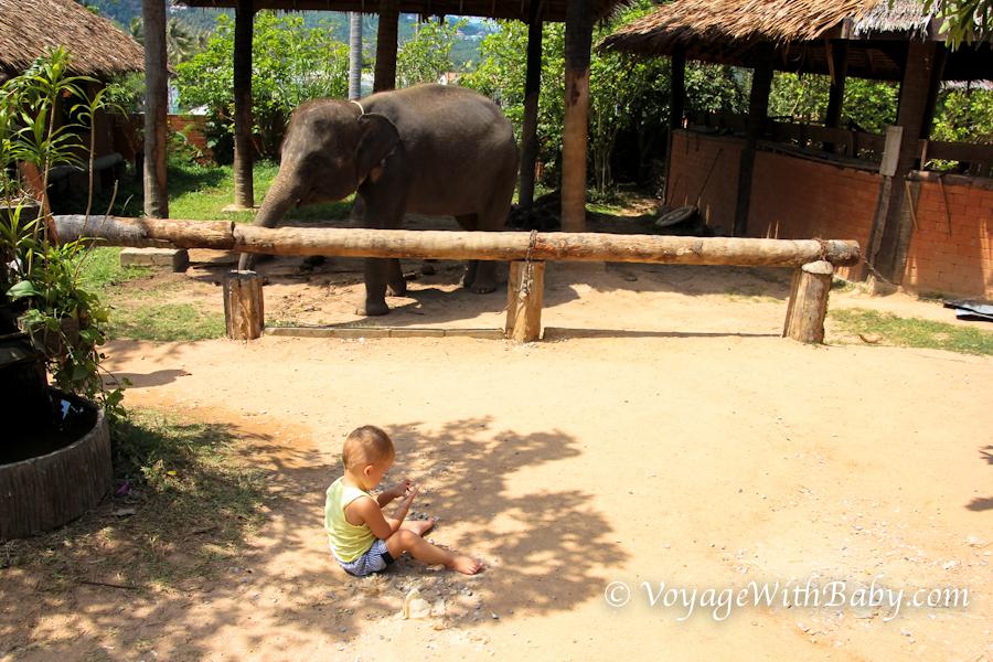 Песок интересней слоника