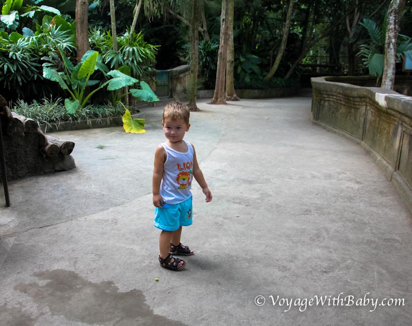 Ребенок в зоопарке на Бали