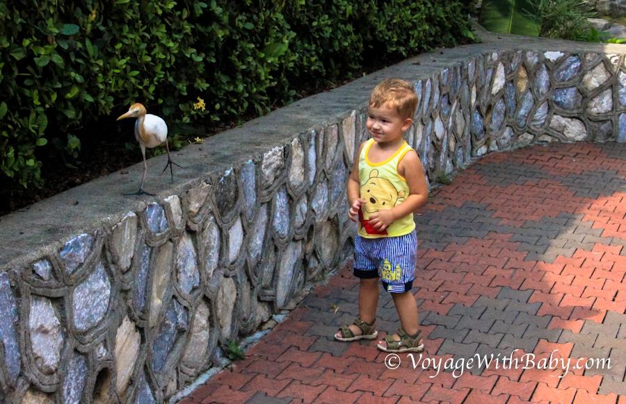 Ребенок в Парке Птиц в Куала Лумпуре