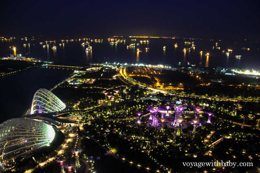 Gardens by the Bay ночью вид сверху