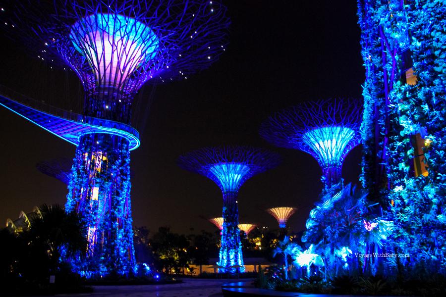 Супердеревья в Садах у Залива в Сингапуре