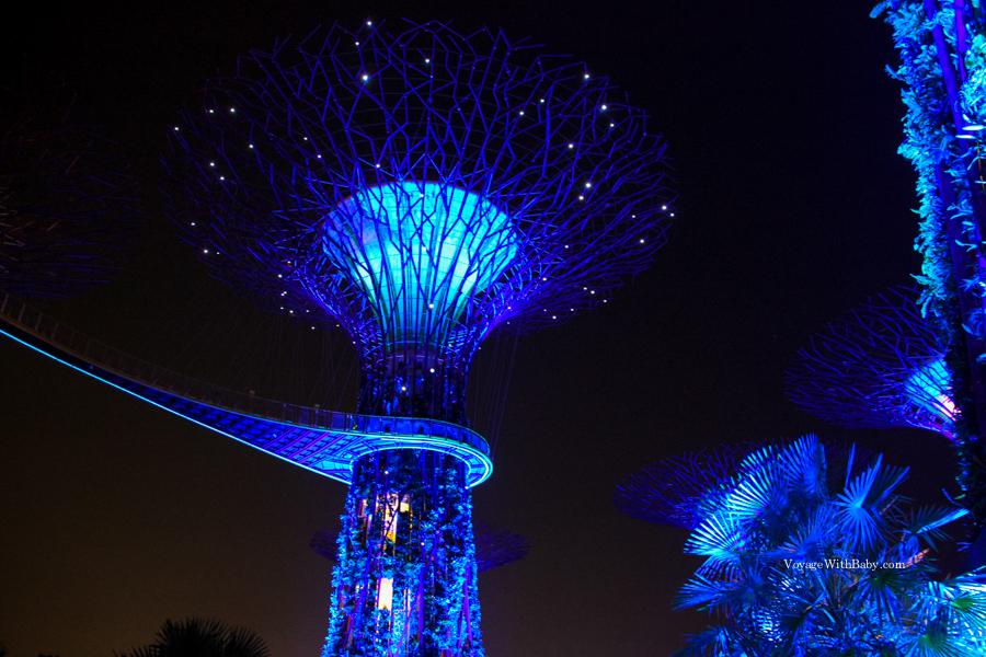 Супердеревья и OCBC Skyway в Сингапуре ночью