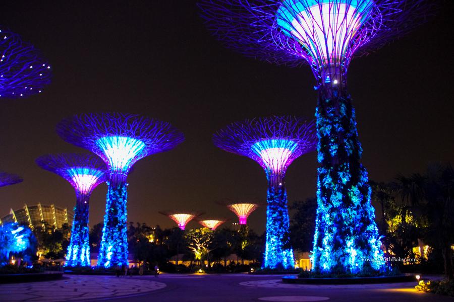 Supertrees Grove в Сингапуре