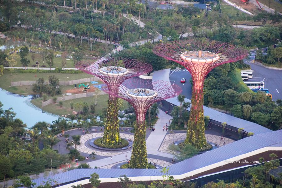 Супердеревья в Сингапуре вид сверху