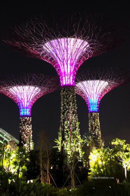 Супердеревья в Сингапуре ночью