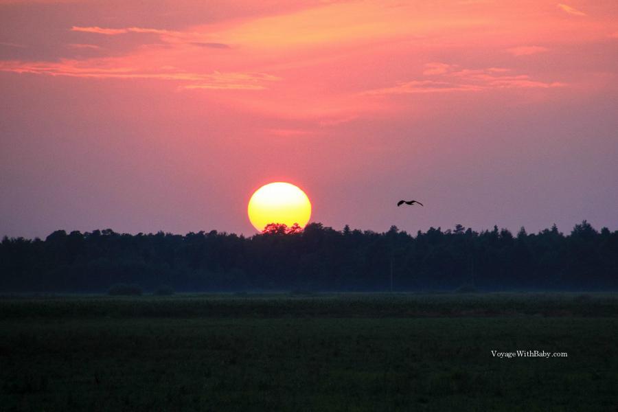 Белорусский закат