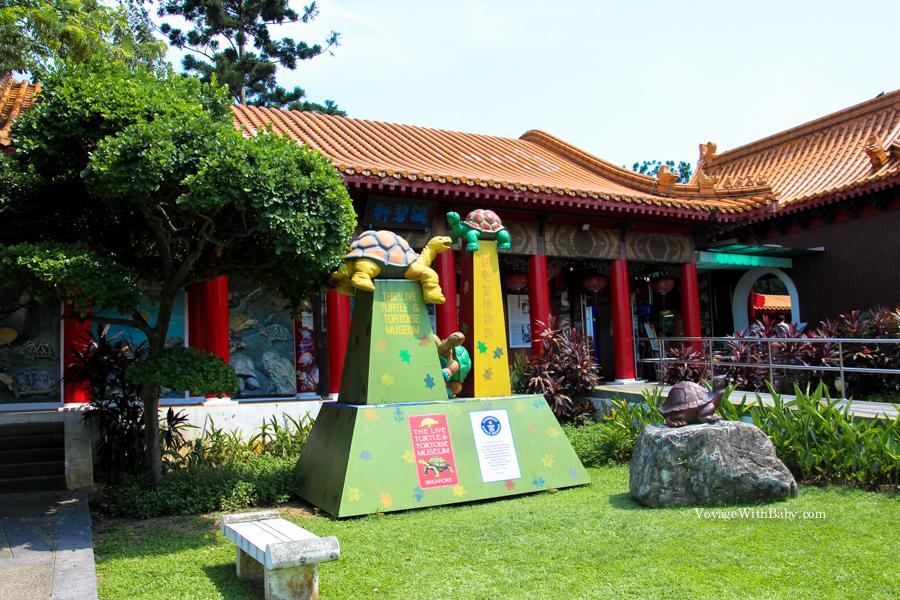 Музей Черепах в японском саду в Сингапуре