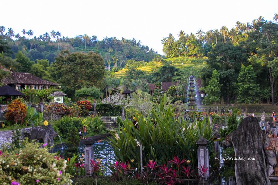 Водный дворец Тиртаганга (Tirta Gangga water palace) на Бали