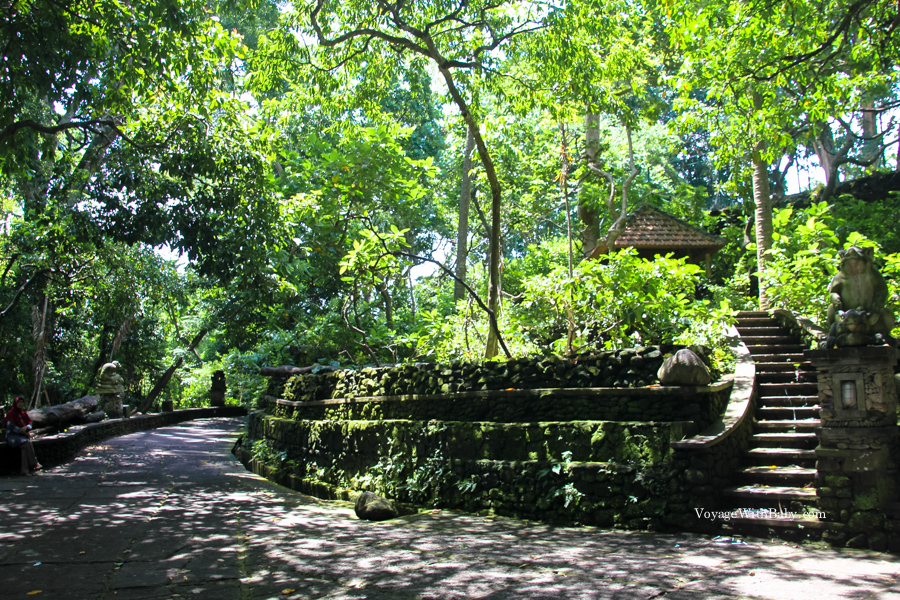 Лес обезьян в Убуде на острове Бали