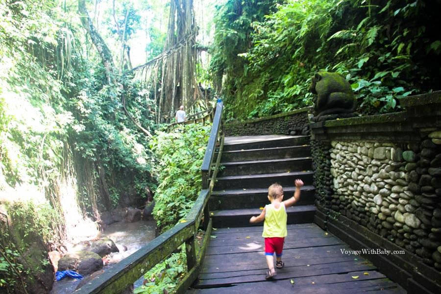 Ребенок в лесу обезьян