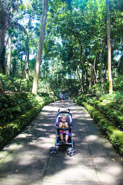Ребенок в Лесу Обезьян на Бали