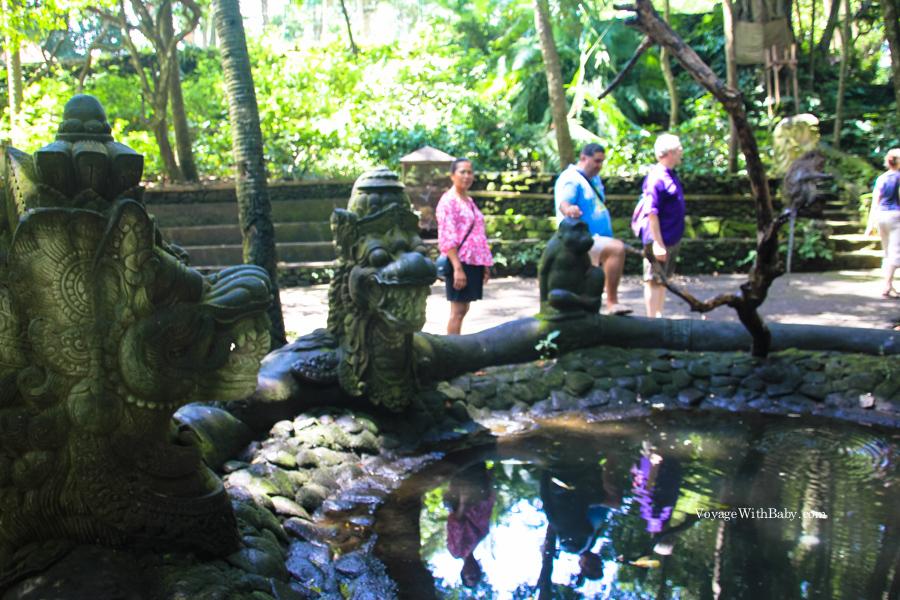 Monkey Forest на Бали