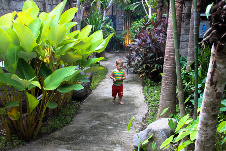 Прогулка по окрестностям на Бали