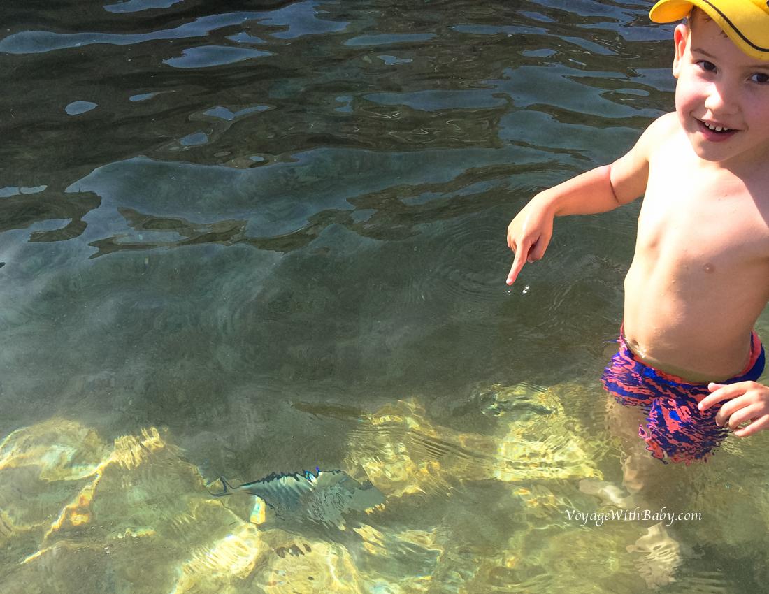 Рыбки под ногами