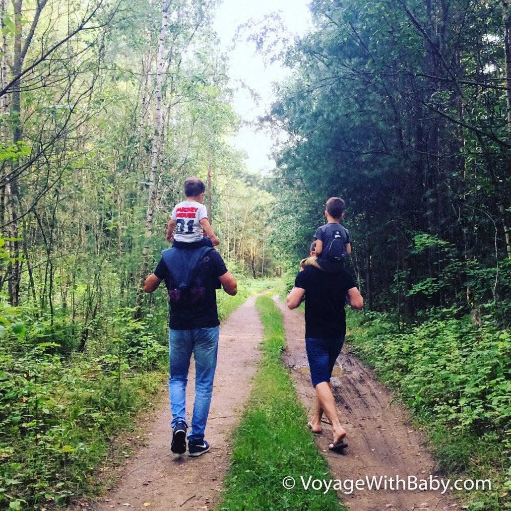 Лес в Гродно