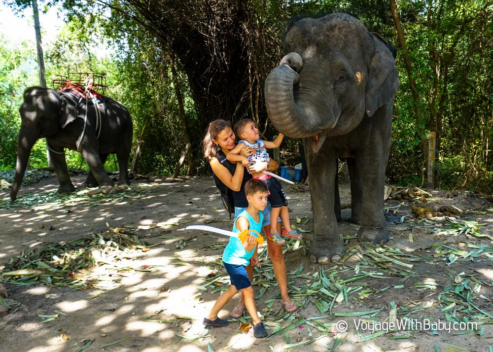Слоновья Деревня в Хуа Хине - Hua Hin Elephant Village